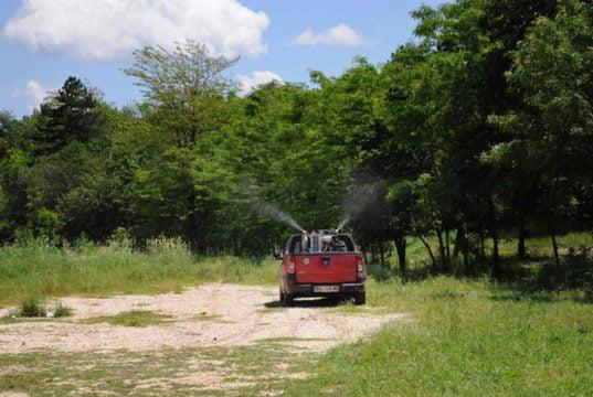 Zaprašivanje komaraca