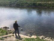 Pecanje na Crnom Timoku u Zaječaru