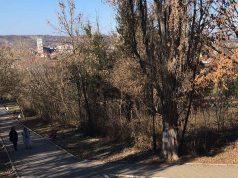 Kraljevica, šetači, staza ka Spomeniku Ljubi Didiću u Zaječaru